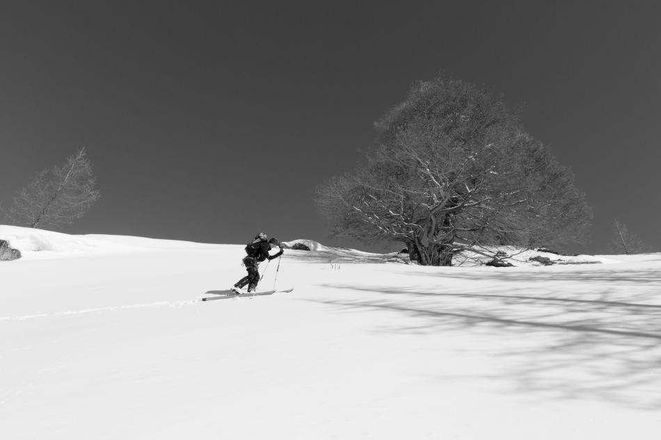 Kirsti Lehtimäki hiking-1-2