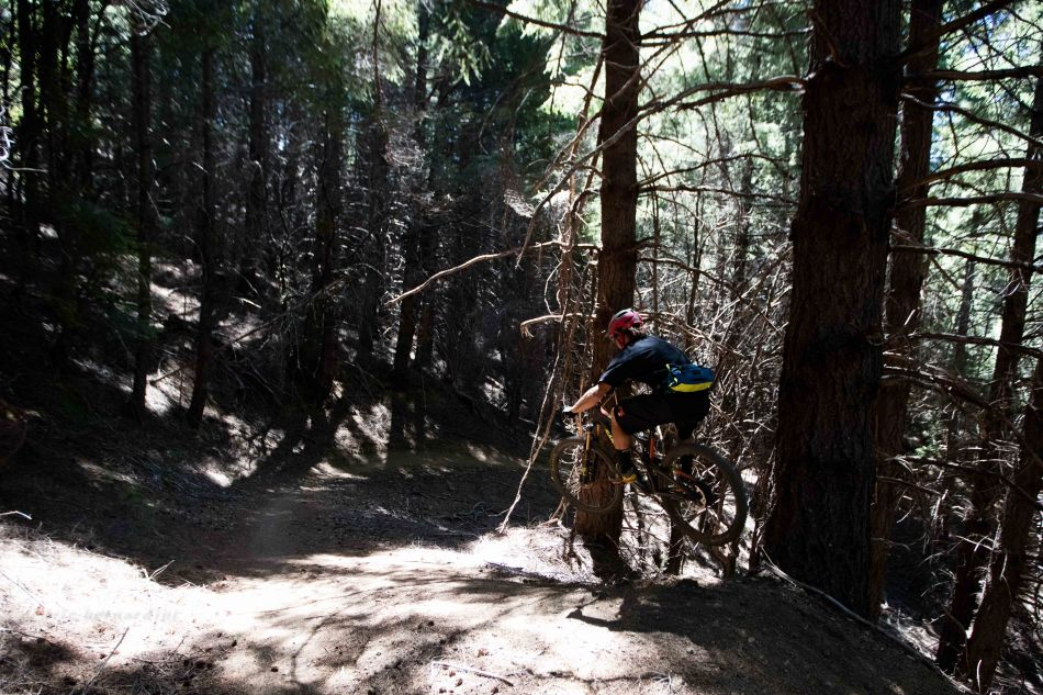 chris riding in the woods by garberville